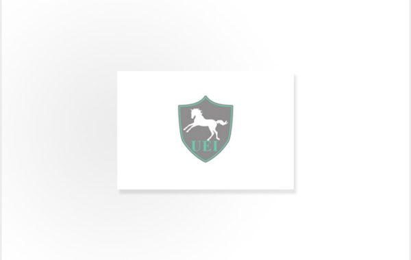 Ullrich Equine international GmbH